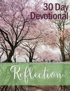 Devotional: Reflection