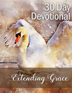 extending grace plr devotional set flat cover